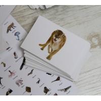 Животни - карти